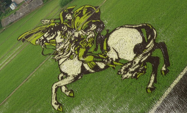 Napolean on horseback can be seen from the skies, created by precision planting and months of planning between villagers and farmers in Inkadate  Read more: http://www.dailymail.co.uk/news/worldnews/article-1198381/Bizarre-spectacle-giant-crop-murals-covering-rice-fields-Japan.html#ixzz0Mf1HzPTc