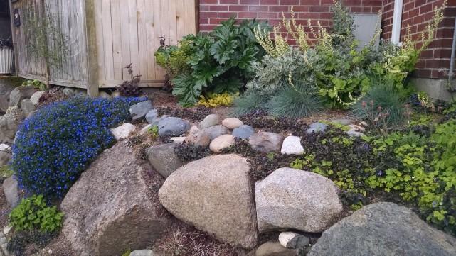 Side rock garden